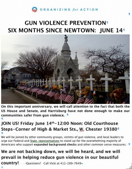 Gun violence pevention 6-14-13