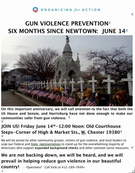 Gun violence pevention 6-14-13